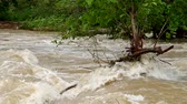 heavy : Tempestuous flow of the river after heavy rains. Stock Footage