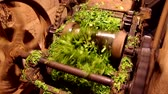 preparations : Old device for cutting grass for farmed animals