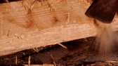 Cutting an old wooden beam with an ax that is attacked by larvae Wideo