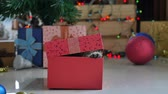 tabby : Cute tabby kitten playing in a gift box with Christmas decoration
