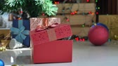pet : Cute tabby kitten playing in a gift box with Christmas decoration