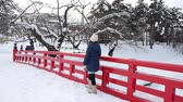 日本 : Portrait of beautiful Asian girl on red bridge at Hirosaki Castle in Aomori, Japan