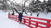 Portrait of beautiful Asian girl on red bridge at Hirosaki Castle in Aomori, Japan
