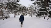 fadas : Asian girl walking in the park in the winter  night,Aomori Japan slow motion
