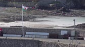 přílivový : Cemaes  Wales - April 26 2018 : Welsh flag waving in Cemaes which is declared as an area of outstanding natural beauty but with a nuclear power plant Dostupné videozáznamy