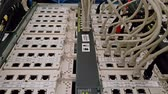 kablolama : Leverkusen  Germany - September 06 2018 : Industrial ethernet network switch is working while green light are flashing Stok Video