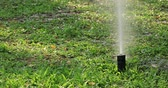 umidade : Garden Irrigation system spray watering lawn Stock Footage