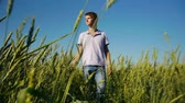 Handsome young  man walking in wheat field at summertime