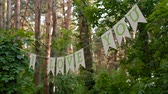 говорю : Letters on line between trees in the forest with the text I love you Стоковые видеозаписи