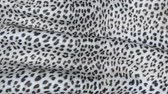 cheetah : Skin of a leopard in motion. Background of the canvas ripples.