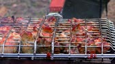 grill marinade : Barbecue meat is roasted in a lattice on the fire. Roasting flesh at rest from the outside. Stock Footage