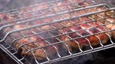 Barbecue meat is roasted in a lattice on the fire. Roasting flesh at rest from the outside. Vidéos Libres De Droits