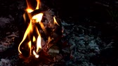 cehennem : Bonfire burns at night. Stok Video