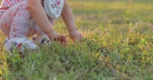 close-up grass on field, baby toddler playing in lawn outdoor