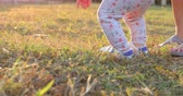 masum : baby boy toddler walking in grass of playground with mother Stok Video