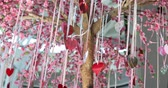 çıkartmalar : heart paper hanging on romantic tree with symbol feeling of love
