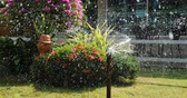 úmido : sprinkler splashing water in garden