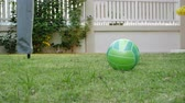 oyun alanı : green ball on lawn grass turf playground in home