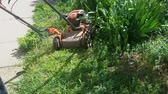 front or back yard : Worker mowing a grass with lawn mower