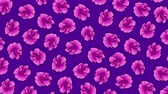 muster retro : Pink flowers pattern animation on purple background