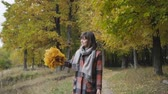 collects : bouquet of the yellow leaves. Autumn girl walking in city park. Portrait of happy lovely and beautiful young woman in forest in fall colors. Stock Footage