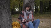 usar : Wonderful autumnal view. Charming young think woman sitting on the grass in a park, use tablet Stock Footage