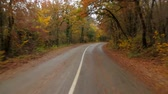 não urbano : Time lapse video shot from inside of a passenger car moving fast in autumn forest along winding asphalt road with roadsides covered with yellow leaves with some cars standing and passing by. Vídeos