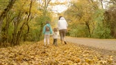 family walk in yellow foliage Stock Footage