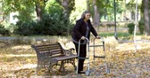Senior woman walking with walker in autumn park. The person is out focus but comes in focus gradually. Wideo