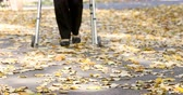 Closeup of senior woman legs walking with walker in autumn park. The person is out focus but comes in focus gradually.
