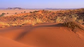 namib desert : View of Sesriem at sunset from the top of the Elim dune in Namibia in Africa.