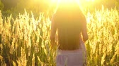 quiet : brunette girl with long hair out of the field with high grass with bright sunlit