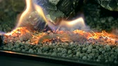 firebrand : Biofireplace burn on ethanol gas. Contemporary mount biofuel on ethanol fireplot fireplace close-up. Decorated bio fireplace. Modern ecological technologies. Interior design of a house inside.