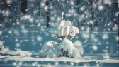 śnieżka : A small beautiful Christmas tree covered with snow on dark blue background in sunny winter frosty day. Landscape Christmas Tree Winter on Sunny Day During Snowfall. Christmas New Year background. Wideo
