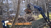 Cleaning dry branches and grass on city streets loading into truck trailer. Cleaning dry leaves tractor bucket. Old tractor bucket picks up old and dry branches and leaves and plunges it into a truck. Wideo