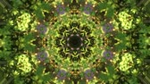 Abstract animated kaleidoscope motion background. Sequence multicolored graphics ornaments patterns. Bright natural green yellow with plant and flowers backdrop. Multicolored seamless loop background.