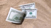 money dolars half covered with sand lie on the beach close-up Stockvideo