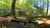 ciclismo : A Caucasian man with a bicycle is riding in the forest path in the summer.POV. Caucasian.  Concept Adventure Active Lifestyle Sports. View from first person perspective.