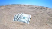 skrytý : Money dolars half covered with sand lie on beach close-up. Three hundred dollars buried in sand on sea or ocean beach Concept finance money holiday relax vacation. Sunny summer warm wind day.