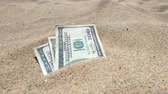 begraven : Money dolars half covered with sand lie on beach close-up. Money grows out of the ground. Dollar bills partially buried in sand on sea ocean beach Concept finance money holiday relax vacation. Stockvideo