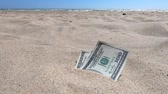 perdido : Money dolars half covered with sand lie on beach close-up. Money grows out of the ground. Dollar bills partially buried in sand on sea ocean beach Concept finance money holiday relax vacation. Stock Footage