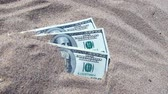 durgunluk : Money dolars half covered with sand lie on beach close-up. Dollar bills partially buried in sand. Three hundred dollars buried in sand on sea ocean beach Concept finance money holiday relax vacation Stok Video