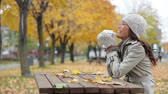 drinking : Fall woman sitting in autumn park drinking coffee with colorful yellow leaves falling from trees. Smiling happy mixed race Asian Caucasian young female professional joyful outside. Stock Footage