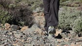 montanha : Hiker - hiking shoes and legs walking closeup from in front. Woman during hike on Teide, Tenerife, Canary Islands, Spain.