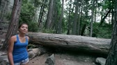 ázsiai : Hiking - woman hiker Yosemite National Park forest. Fit active Asian girl walking outdoors for exercise as part of healthy lifestyle. Young mixed race Asian Caucasian female model.