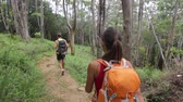 caminhadas : Hiking people - Hiker couple on Hawaii. Rear back view of woman and man trekkers walking down forest path with backpack on Waihee ridge trail, Maui, USA. Multiracial couple, Asian woman, caucasian man Stock Footage