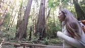 walk : Hiking couple in forest Redwoods, San Francisco. Hikers walking among Redwood trees near San Francisco, California, USA. Multi-racial couple, young Asian woman and Caucasian man. Stock Footage
