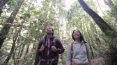 caminhada : Hiking couple in forest Redwoods, San Francisco. Hiker couple walking among Redwood trees near San Francisco, California, USA. Multi-racial couple, young Asian woman and Caucasian man.