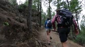 Couple running having fun while hiking. Man chasing woman on romantic hike in forest. Playful young lovers in outdoor activity. Happy young hikers on trail to Roque Nublo, Gran Canaria, Canary Islands
