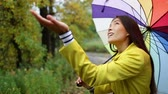 arco íris : Autumn  fall - woman happy with umbrella in rain walking in forest. Girl enjoying rainy fall day looking away smiling. Mixed race Caucasian  Asian chinese girl.